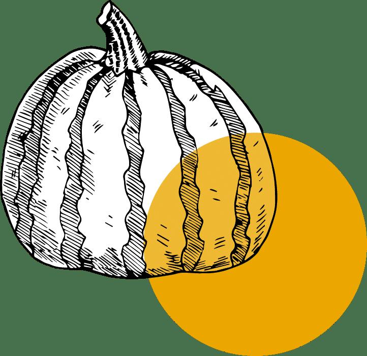 ter ferme legumes 03